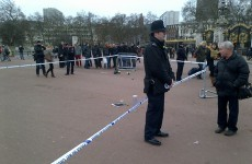 Police taser man outside Buckingham Palace