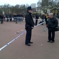 Police taser man outside Buckingham Palace