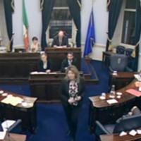 LIVE: Seanad debates legislation to liquidate IBRC