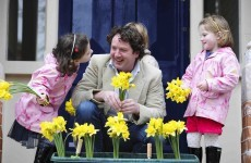 Daffodil Day campaign aims to raise €3.4m