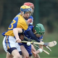 Fitzgibbon Cup: Wins for Mary I, UCC, WIT, LIT, and DIT