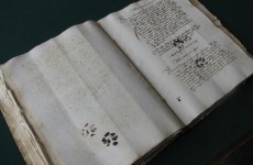 PIC: Cats… ruining people's lives since the 15th century