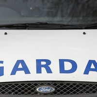 Two men arrested in Cork after handguns found in vehicle