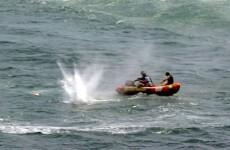 New Zealand man killed in shark attack