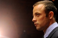 Pistorius bought, collected guns in Olympic year