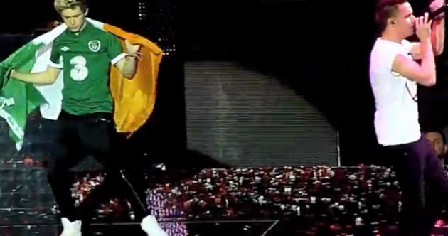 The Dredge: Irish fans lie on the ground for One Direction... literally