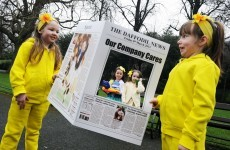 Daffodil Day looking to get 200 companies on board campaign