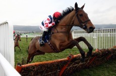 Confused by Cheltenham? Here's what you will need to get through the week