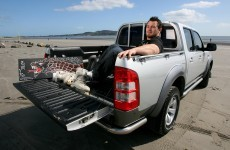 With Cian Healy's jeep out of action, here are 7 possible alternatives