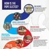 Infographic: How is the new Pope elected?