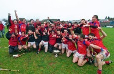 Meet the 18 brothers in the squad of All-Ireland finalists St Thomas