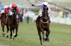 Irish raid continues as Solwhit storms to World Hurdle win