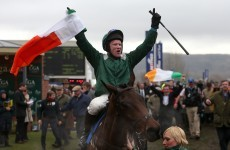 Trinity students go absolutely mental as Salsify claims thrilling Foxhunter finish