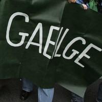 Poll: Should Irish be a compulsory subject in secondary schools?