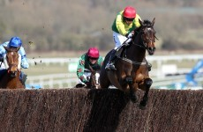 De Bromhead Sizing up Queen Mother Champion Chase