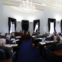 Seanad could be given role to hold public inquiries... if it survives