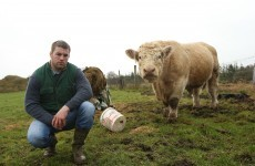 A tip of the hat to the greatest farmers in Irish sport