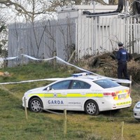 Body of young man discovered in Dublin field