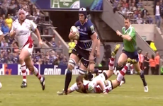 VIDEO: Wasps get in the mood for Challenge Cup 1/4s by paying homage to Leinster