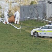 Body of man found in Dublin field identified