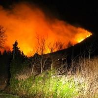 Fire services spend hours battling fire on 'Little Sugar Loaf'