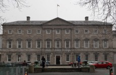 Calorie counts coming to Leinster House