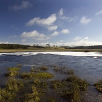 New website monitors 'real time' water levels