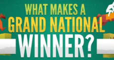 All the Grand National statistics you need in one beautiful infographic