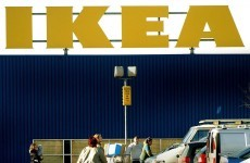 IKEA pulls 18,000 moose lasagnes over mislabelling worries
