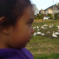 VIDEO: Our favourite little girl of the day