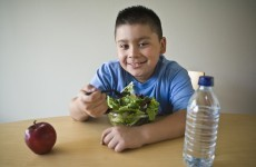 """HSE childhood obesity services """"sparse or non existent"""" across country"""