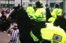 Bud, the police horse punched by an idiot Newcastle fan yesterday, is fine