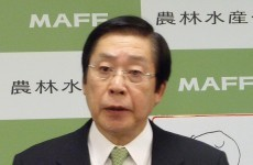 Japan wants international action against anti-whaling group