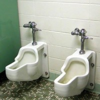 9 things you may find in a strange toilet