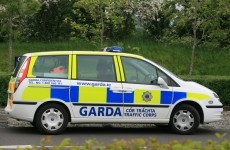 Wexford Gardaí arrest man over suspected dissident activity