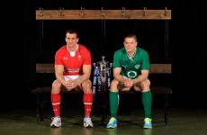 Odds of Sam Warburton landing Lions captaincy slashed by bookmakers