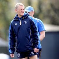 Joe Schmidt named as new Ireland head coach