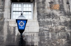 Shatter: Govt determined to help gardaí in fight against crime