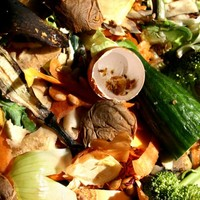 Irish households 'waste €700 a year' throwing out rotten food