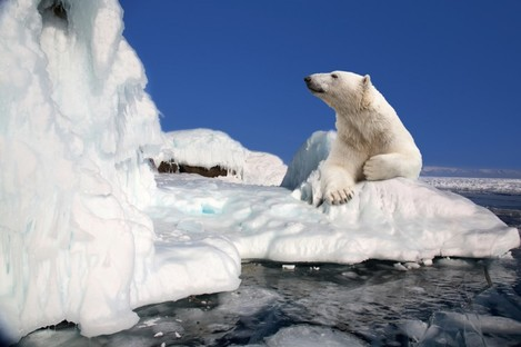 Global warming did not continue as quickly as some had feared over the last decade - but Earth still seems set to break its own targets for how quickly the polar icecaps will melt.