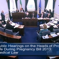 6 interesting moments from the final day of the Oireachtas abortion hearings
