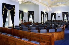 Campaign to save the Seanad launched