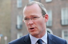 Minister 'energised and determined' to get good deal for Irish farmers