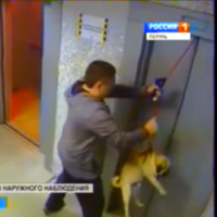 Man saves dog from certain death in lift