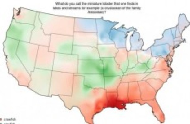 22 maps showing how different Americans pronounce different
