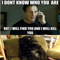So who was Liam Neeson really talking to in 'Taken'?