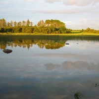 Lithuanian man drowns after going for a swim in Galway lake