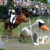 It's Your Horse Jumping Over a Giant Swan Picture of the Day
