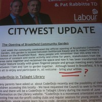 Dublin TD asks locals to 'bring your willies' to community event