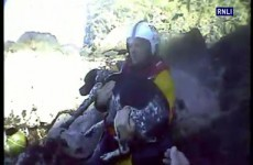 Luca the dog rescued after falling 200ft down a cliff edge